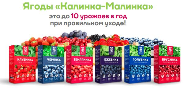 Домашняя ягодница Калинка-Малинка в Ухте