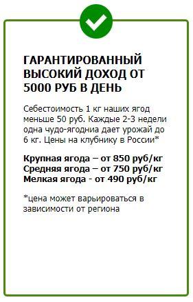 Домашняя ягодница Калинка-Малинка в Иркутске